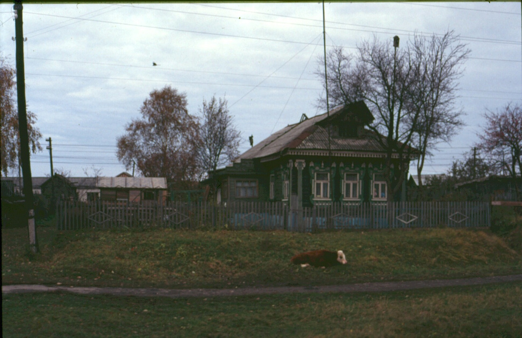 russian village fotografia